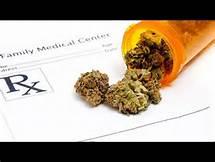 medical-marijuana-free-license