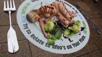 peta-vegan-plate-girl